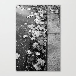 Fall Leaves Canvas Print