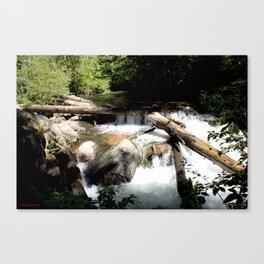 Fall Creek - Tumbling Down from Endlich Mesa, at 12,000 feet Canvas Print