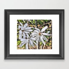 waving flowerheads Framed Art Print