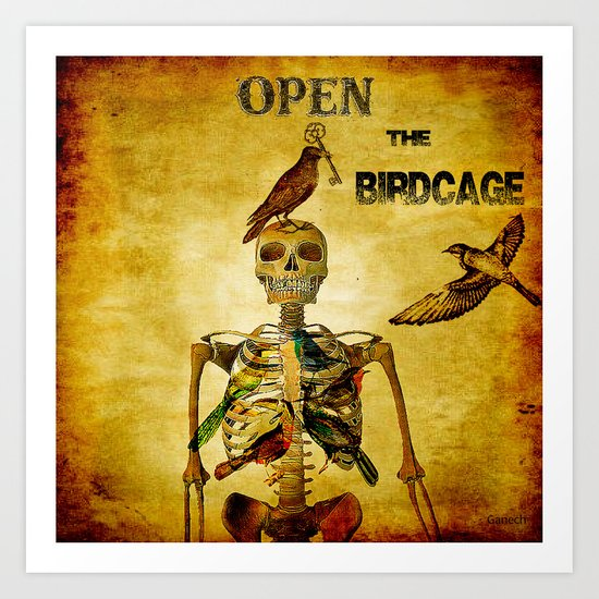 Open the Birdcage Art Print