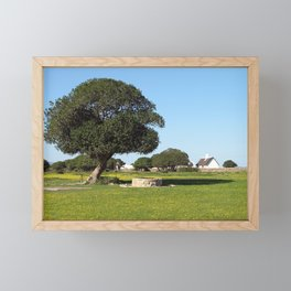 Tree Farm Green Meadows Spring Landscape, South Africa Framed Mini Art Print