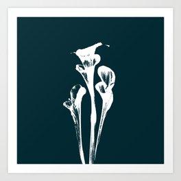 Calla Lily - Navy Art Print