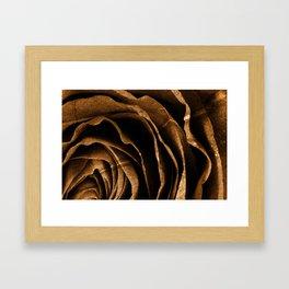Sepia Grunge Rose Framed Art Print
