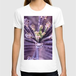 Purple Euphorbia in Detail T-shirt