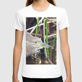 Juvenile Black Crowned Night Heron T-shirt