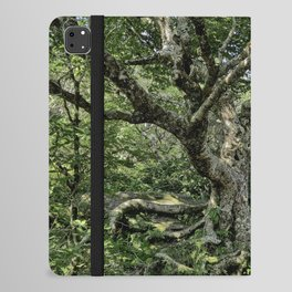 Tree of Wonder iPad Folio Case