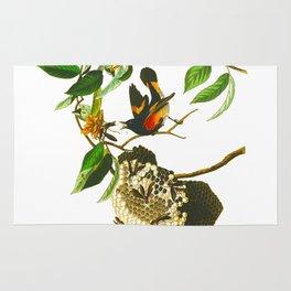 Vintage Scientific Bird & Botanical Illustration Rug