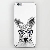 kangaroo iPhone & iPod Skins featuring kangaroo by  Steve Wade ( Swade)
