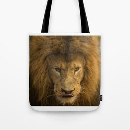 Lion - Time To Eat Tote Bag