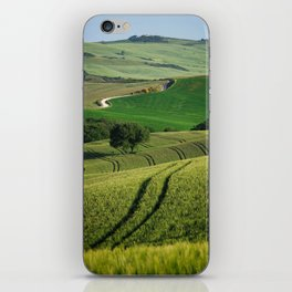 Curves and lines in the green fields of Tuscany iPhone Skin