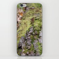 moss iPhone & iPod Skins featuring Moss by Tayler Smith