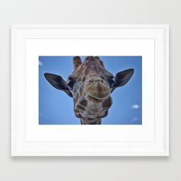 The Smiling Giraffe  Framed Art Print