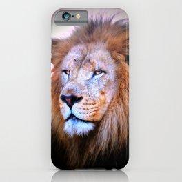 HASANI iPhone Case