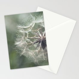 Tragopogon -Meadow Salsify 43 Stationery Cards