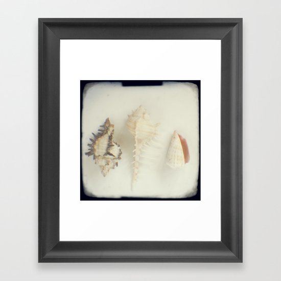 Shell trio Framed Art Print