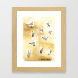 Seagulls of Newcastle Framed Art Print