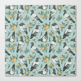 Pigeons, Apricots, and Thyme Canvas Print