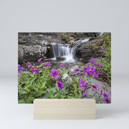 Secluded Waterfall Mini Art Print