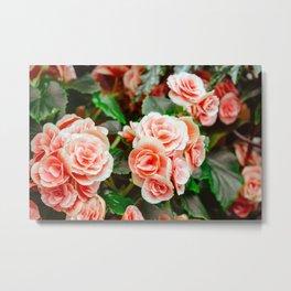 FLOWERS - FLORA - PETALS - BLOSSOMS - BEAUTIFUL Metal Print