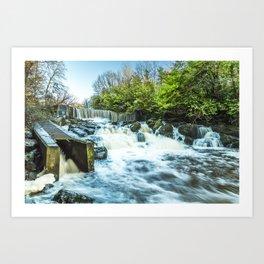 Crumlin Glen II Art Print