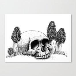 Skull & Morel Canvas Print