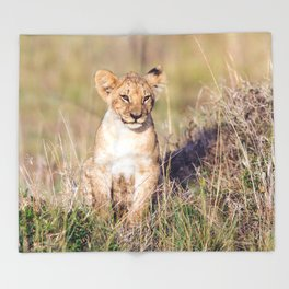 Young lion Throw Blanket