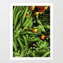 Nasturtiums and Peas by farmtoscanner