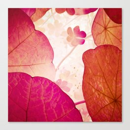 Magical nature Canvas Print