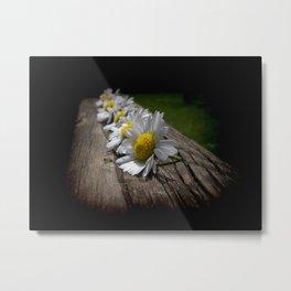 Gän se die Blume? Metal Print