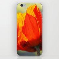 poppy iPhone & iPod Skins featuring Poppy by Falko Follert Art-FF77