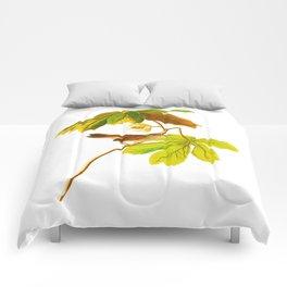 Swamp Sparrow Comforters