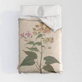 Honesty - botanical Comforters