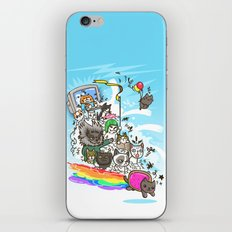 Release The Cats iPhone & iPod Skin