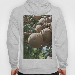 Cannonball Fruit Hoody