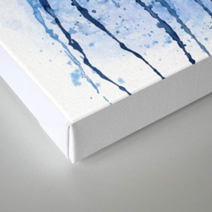 Soar Motion Canvas Print