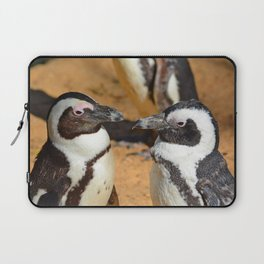 African penguins Laptop Sleeve