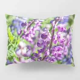 Field of Lupines Photography Print Pillow Sham