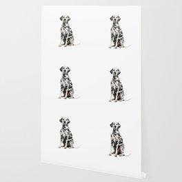 Cute Dalmatian 7 Wallpaper