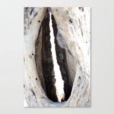Driftwood lips  Canvas Print