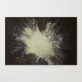 Lost Ones Canvas Print