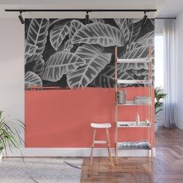 Calathea living coral Wall Mural