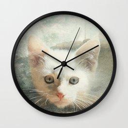 Flamepoint Siamese Kitten Wall Clock