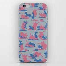 Bipartisan Politics iPhone & iPod Skin