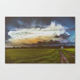 BURST AND BLOOM Canvas Print