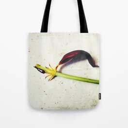 on days like this Tote Bag