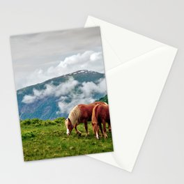 Horses Meadow Mountains landscape Stationery Cards