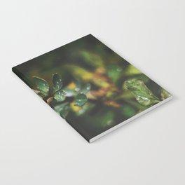 Autumn Rain Notebook