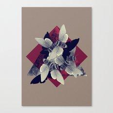 SCHMETTERDING Canvas Print
