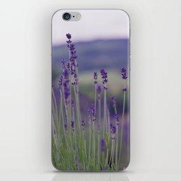 Lavender Fields Forever iPhone Skin