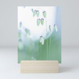 Plants that look like small lamps Mini Art Print